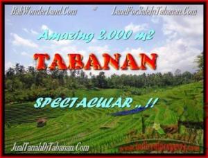 TANAH di TABANAN DIJUAL TJTB172