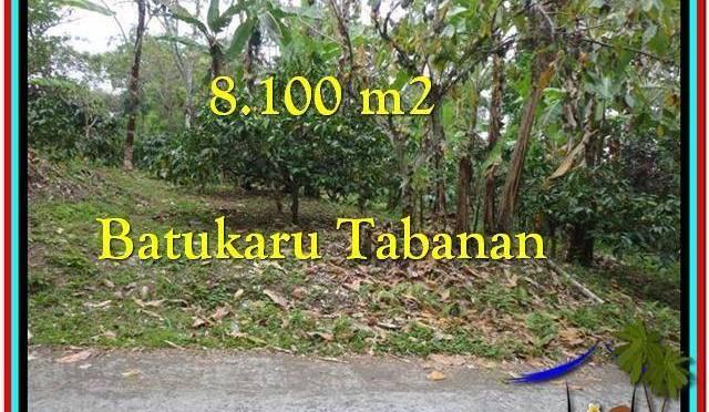 JUAL TANAH MURAH di TABANAN BALI 81 Are di Tabanan Penebel