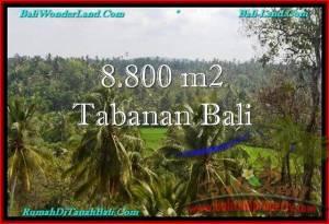 JUAL TANAH MURAH di TABANAN 88 Are di Tabanan Selemadeg