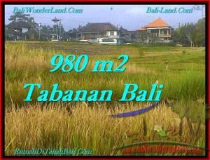 TANAH di TABANAN DIJUAL Untuk INVESTASI TJTB244