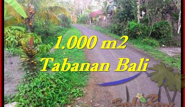 INVESTASI PROPERTY, TANAH di TABANAN BALI DIJUAL MURAH TJTB242
