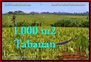 JUAL TANAH MURAH di TABANAN BALI 1,000 m2  View sawah, gunung