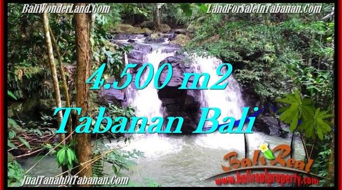 TANAH MURAH JUAL di TABANAN BALI 45 Are View Sawah dan Sungai