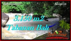 TANAH di TABANAN DIJUAL MURAH 3,150 m2 di Tabanan Selemadeg