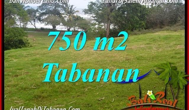 TANAH MURAH JUAL TABANAN 7.5 Are View laut dan sawah