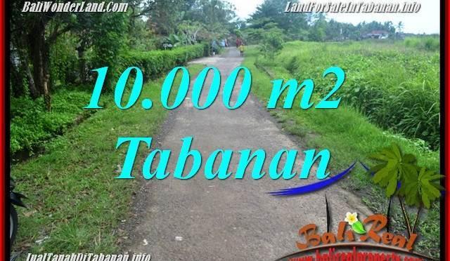 INVESTASI PROPERTI, DIJUAL MURAH TANAH di TABANAN TJTB354