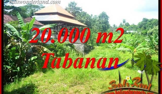 JUAL Tanah di Tabanan 200 Are View Sawah dan Sungai