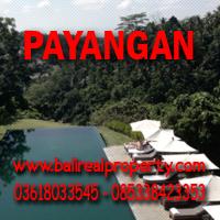 Tanah dijual di Ubud Payangan