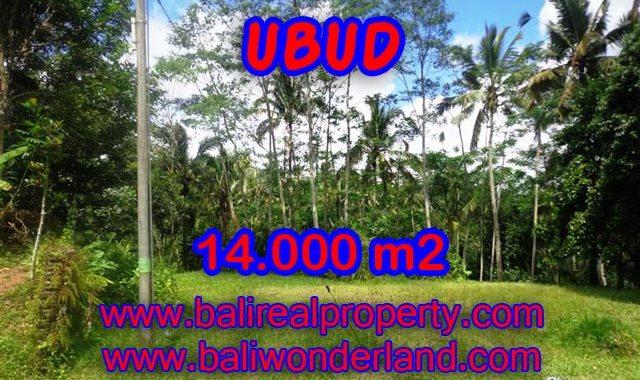 Tanah di Bali dijual murah 14.000 m2 di Ubud Payangan