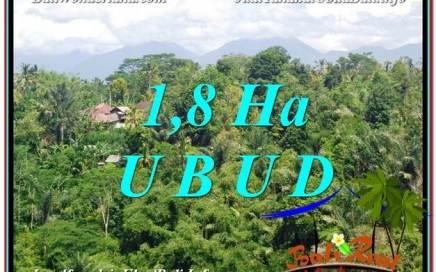 JUAL TANAH MURAH di UBUD Untuk INVESTASI TJUB589