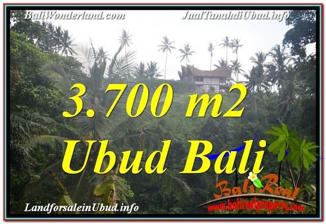 TANAH di UBUD JUAL MURAH 3,700 m2 View Tebing dan Sungai, Link. Villa