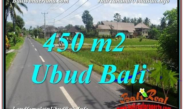 TANAH MURAH di UBUD BALI DIJUAL 5 Are di Sentral / Ubud Center