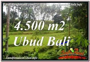 TANAH MURAH di UBUD 45 Are VIEW LINGKUNGAN VILLA