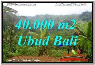TANAH JUAL MURAH  UBUD BALI 40,000 m2  VIEW SUNGAI DAN TEBING