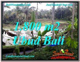TANAH MURAH di UBUD BALI TJUB616
