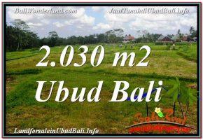 TANAH MURAH DIJUAL di UBUD BALI TJUB623
