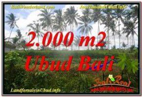 TANAH di UBUD DIJUAL MURAH 2,000 m2 di Ubud Pejeng