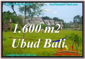 INVESTASI PROPERTY, DIJUAL TANAH MURAH di UBUD TJUB633