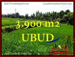 JUAL TANAH MURAH di UBUD Untuk INVESTASI TJUB658