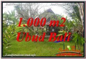 JUAL TANAH MURAH di UBUD BALI 1,000 m2 di SENTRAL UBUD