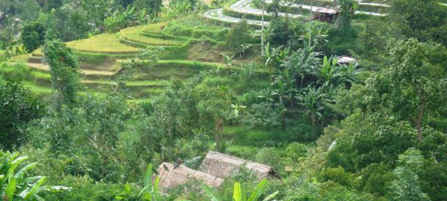 Jual tanah di Tabanan Bali