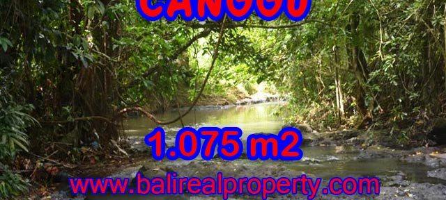 Tanah di Bali dijual 1.075 m2 di Canggu Pererenan