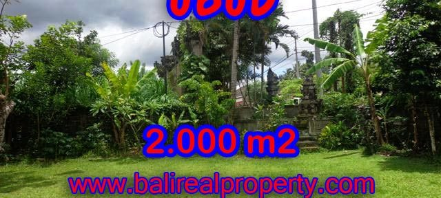 INVESTASI PROPERTI DI BALI - TANAH DI UBUD BALI DIJUAL CUMA RP 4.350.000 / M2