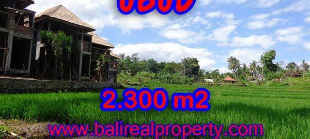 Jual tanah di Bali murah view sawah dan sungai di Dekat Ubud Center
