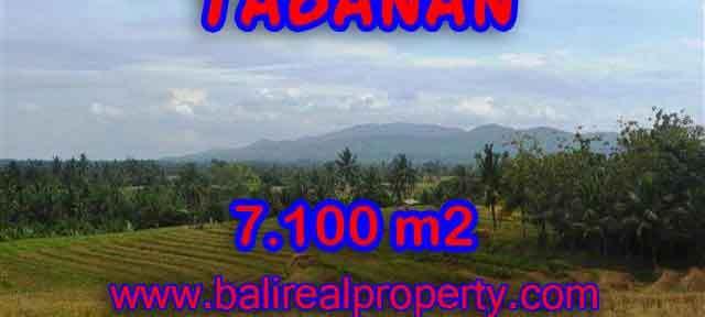 MURAH ! TANAH DIJUAL DI TABANAN BALI TJTB125 - INVESTASI PROPERTY DI BALI