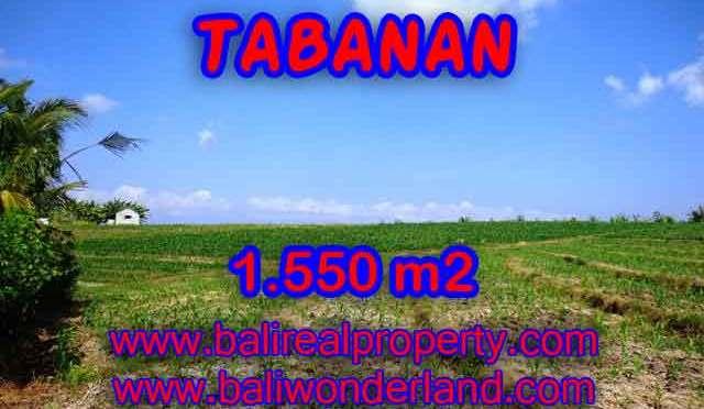 TANAH DIJUAL DI TABANAN BALI MURAH TJTB134 - PELUANG INVESTASI PROPERTY DI BALI