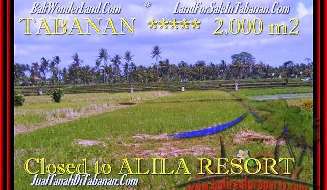 TANAH DIJUAL di TABANAN 2.000 m2 di Tabanan yeh Gangga