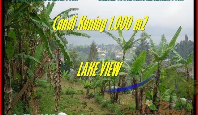JUAL MURAH TANAH di TABANAN 1.000 m2 View Danau Beratan dan Gunung