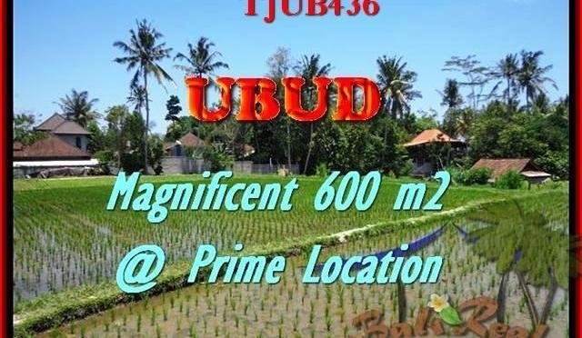 TANAH DIJUAL di UBUD BALI 300 m2 di Sentral Ubud
