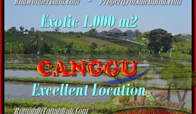 TANAH MURAH JUAL CANGGU 1.000 m2 View sawah dan laut linkungan villa