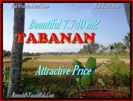 TANAH JUAL MURAH TABANAN 7.740 m2 view sawah dan Gunung