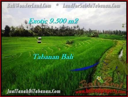 JUAL TANAH di TABANAN BALI 9,500 m2 View Gunung dan sawah