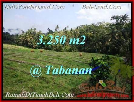 TANAH DIJUAL MURAH di TABANAN BALI 3,250 m2 di Tabanan Selemadeg