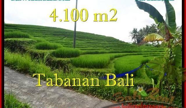 INVESTASI PROPERTY, JUAL TANAH MURAH di TABANAN BALI TJTB239