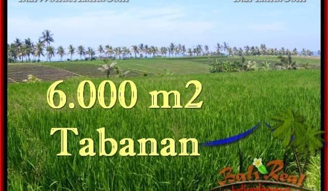 JUAL MURAH TANAH di TABANAN BALI 60 Are View Laut, Sawah dan Gunung