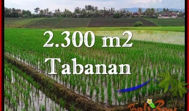 TANAH di TABANAN BALI DIJUAL MURAH 2,400 m2 di Tabanan Selemadeg