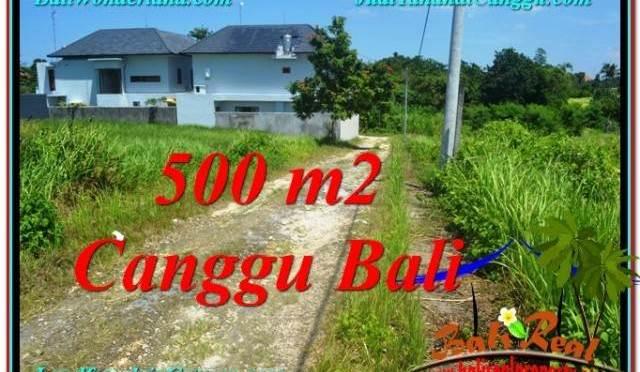 TANAH MURAH di CANGGU 500 m2 View sawah lingkungan villa