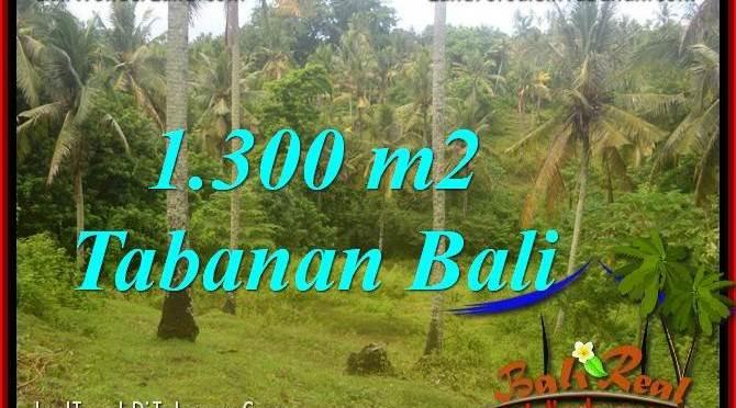 INVESTASI PROPERTI, DIJUAL TANAH MURAH di TABANAN BALI TJTB314