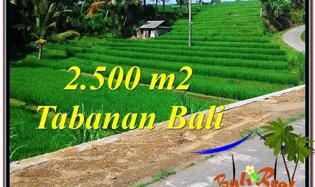 JUAL TANAH MURAH di TABANAN 2,500 m2 View Sawah dan Sungai