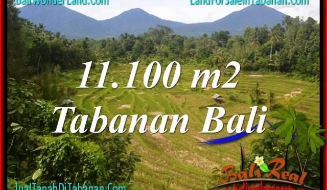 DIJUAL TANAH MURAH di TABANAN BALI 11,100 m2 di Tabanan Penebel