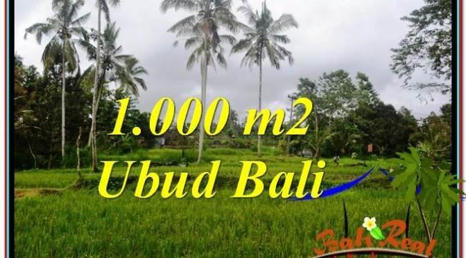 JUAL MURAH TANAH di UBUD 1,000 m2 di Ubud Payangan