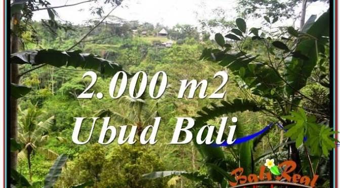 JUAL TANAH MURAH di UBUD Untuk INVESTASI TJUB573