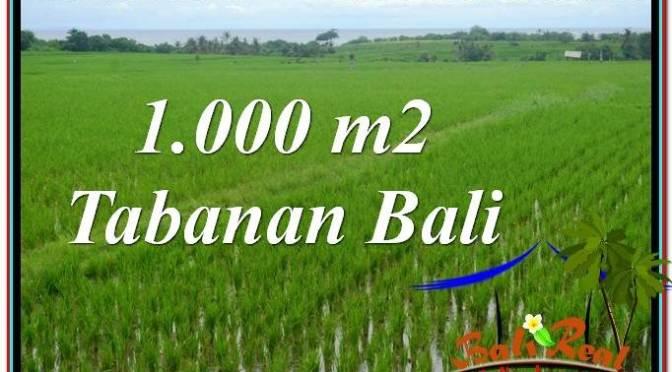 DIJUAL MURAH TANAH di TABANAN BALI 1,000 m2 di Tabanan Kerambitan