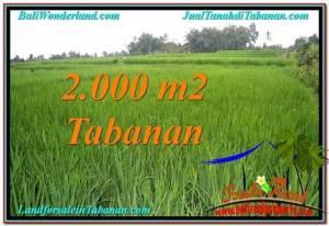 TANAH di TABANAN BALI DIJUAL MURAH 2,000 m2 di Tabanan Penebel