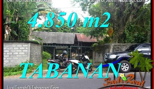 INVESTASI PROPERTI, TANAH DIJUAL di TABANAN BALI TJTB330