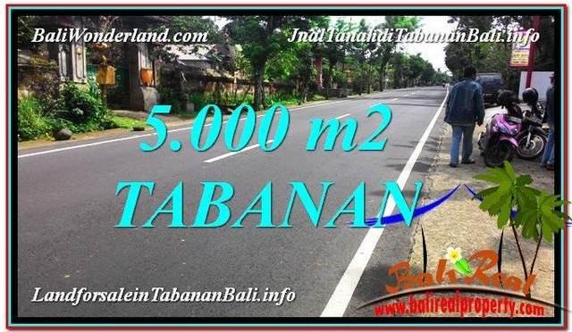 TANAH MURAH di TABANAN BALI DIJUAL 5,000 m2 View Kebun